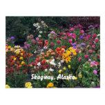 Wildflowers, Alaska Tarjeta Postal