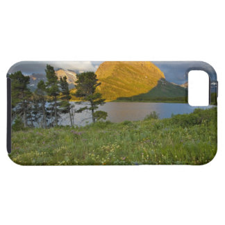 Wildflowers along Swiftcurrent Lake in the Many iPhone 5 Cases
