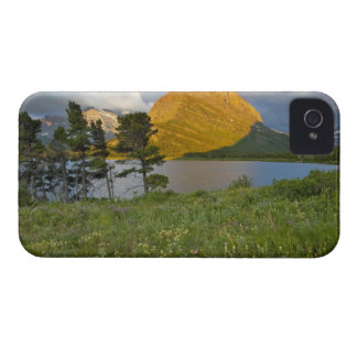 Wildflowers along Swiftcurrent Lake in the Many iPhone 4 Cover