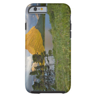 Wildflowers along Swiftcurrent Lake in the Many Tough iPhone 6 Case