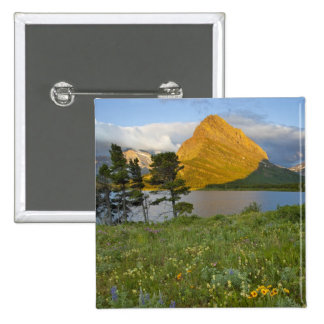 Wildflowers along Swiftcurrent Lake in the Many Pinback Button