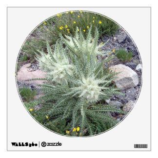 Wildflowers alpinos de la bola escarchada