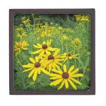 Wildflowers amarillos caja de regalo de calidad