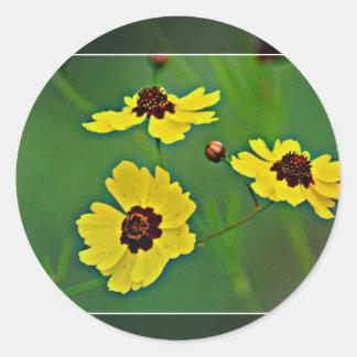 Wildflowers amarillos - coreopsis de los llanos pegatinas redondas