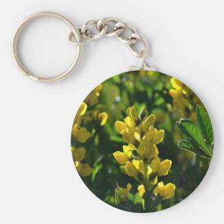 Wildflowers amarillos en el llavero de las montaña