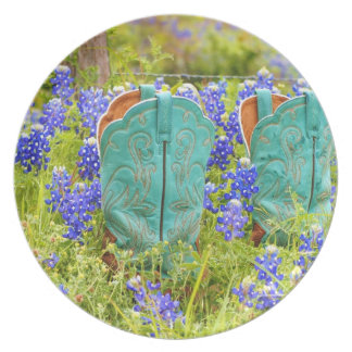 Wildflowers and Boots Dinner Plates