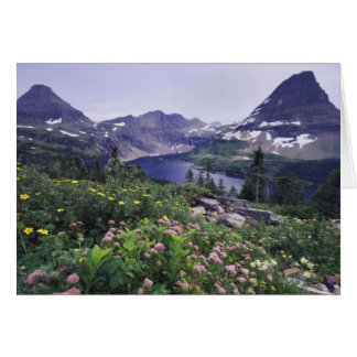 Wildflowers and Hidden Lake, Shrubby Card