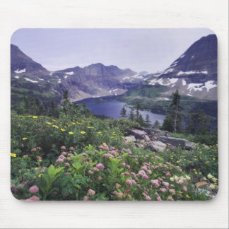 Wildflowers and Hidden Lake, Shrubby Mouse Pad