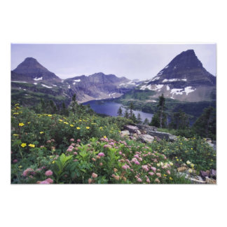 Wildflowers and Hidden Lake, Shrubby Photo Print