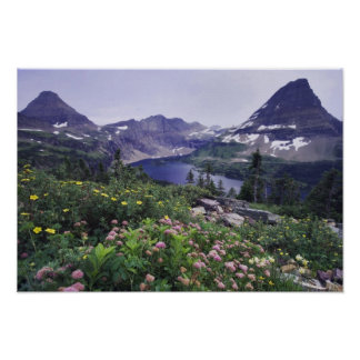 Wildflowers and Hidden Lake, Shrubby Poster