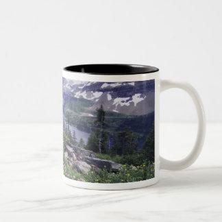 Wildflowers and Hidden Lake, Shrubby Two-Tone Coffee Mug