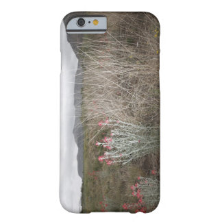 Wildflowers and Plants, Del Rio, Texas, USA Barely There iPhone 6 Case
