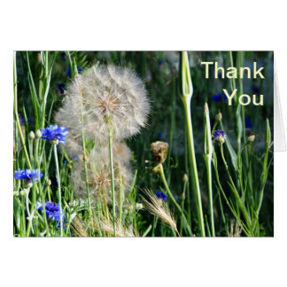 Wildflowers and Puffball, Thank You Stationery Note Card