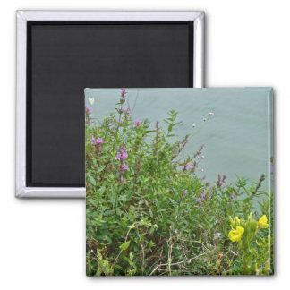 Wildflowers at Green Lane Reservoir Magnet