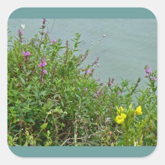 Wildflowers at Green Lane Reservoir Square Sticker