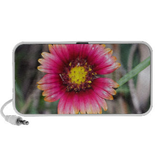 Wildflowers at the Beach Notebook Speaker