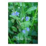 Wildflowers azules minúsculos felicitaciones