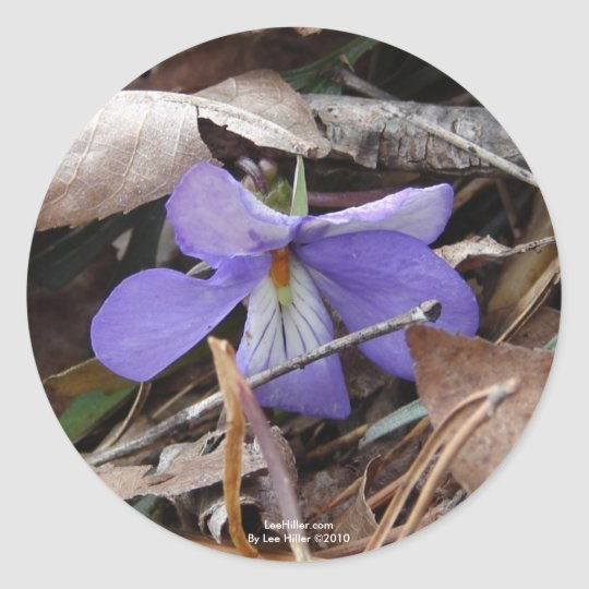 WildFlowers Birds-Foot Violet Hot Springs AR Gifts Classic Round Sticker