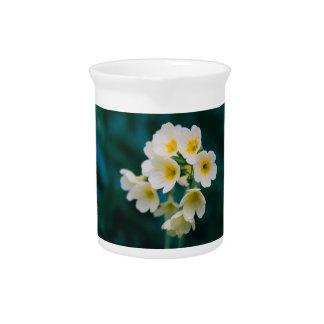 Wildflowers blancos en un fondo del trullo jarrón