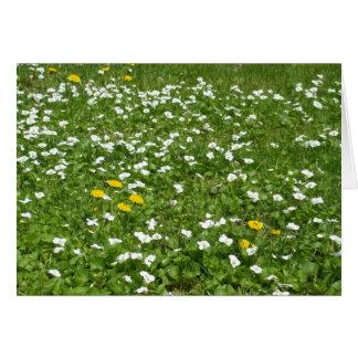 Wildflowers -Blank Card
