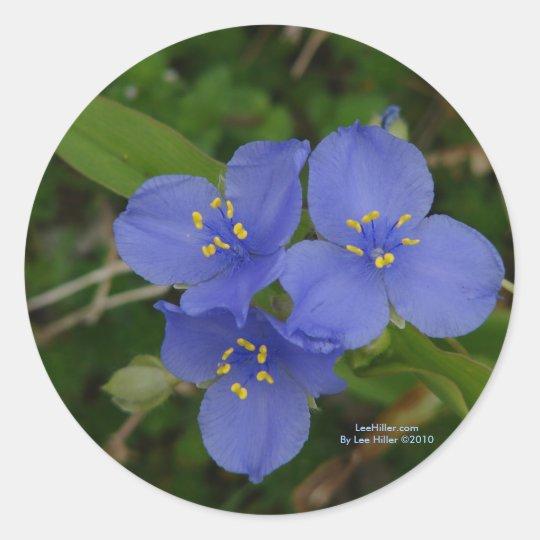 Wildflowers Blue Spiderwort Hot Springs AR Gifts Classic Round Sticker