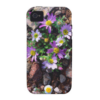 Wildflowers Vibe iPhone 4 Cases