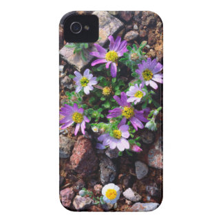 Wildflowers Case-Mate iPhone 4 Case