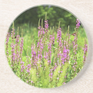 Wildflowers Coaster