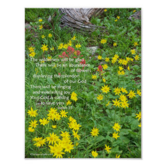 Wildflowers, Colorado High Country Poster