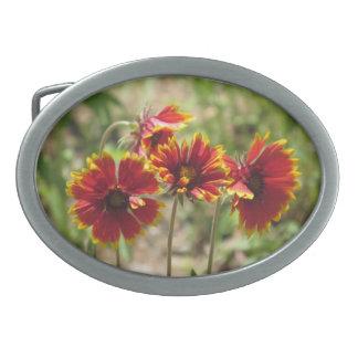 Wildflowers combinados indios hebillas cinturón ovales