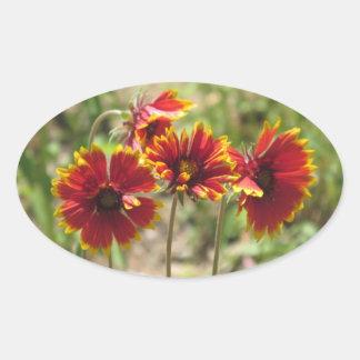 Wildflowers combinados indios pegatina ovalada