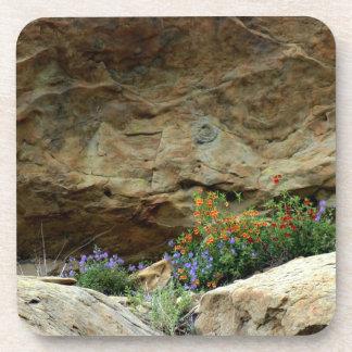 Wildflowers Drink Coasters