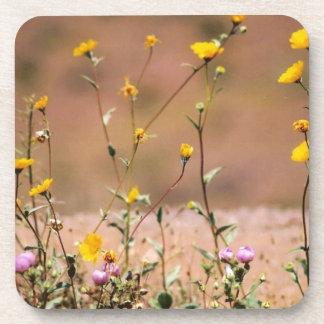 Wildflowers Drink Coaster