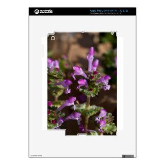 Wildflowers de Alabama Henbit Deadnettle iPad 3 Skin