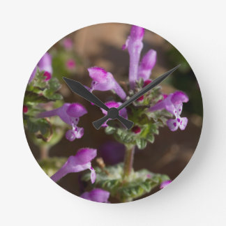 Wildflowers de Alabama Henbit Deadnettle Reloj Redondo Mediano