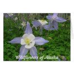 Wildflowers de Alaska-Columbine (Aquilegiacan) Tarjeta De Felicitación