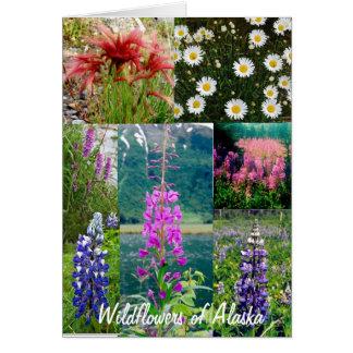 Wildflowers de Alaska Tarjeta Pequeña