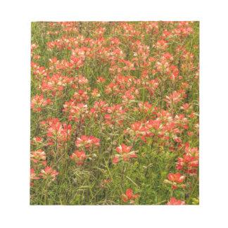 Wildflowers de la brocha india de Tejas Blocs