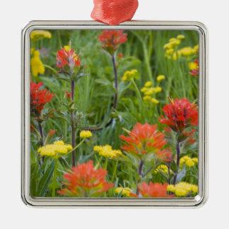 Wildflowers de la brocha india y del biscuitroot ornamentos de navidad