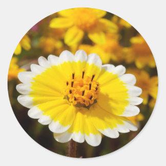 Wildflowers de la extremidad ordenada pegatina redonda