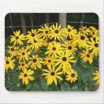 wildflowers de la fila de la cerca tapete de raton