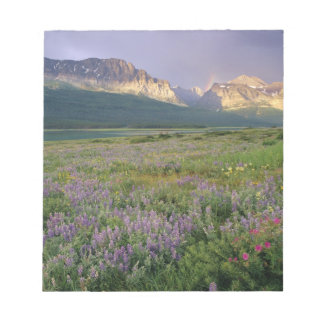Wildflowers de la pradera a lo largo del lago Sher Bloc De Papel