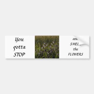 Wildflowers de la pradera pegatina de parachoque