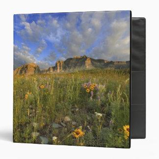 """Wildflowers de la pradera en la cala ventosa en el carpeta 1 1/2"""""""