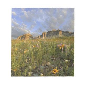 Wildflowers de la pradera en muchos valle del glac libretas para notas