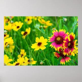 Wildflowers de la pradera en país de la colina posters