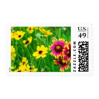 Wildflowers de la pradera en país de la colina sello postal