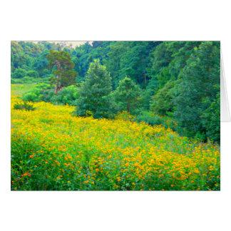 Wildflowers de la primavera de Avalon Tarjeta De Felicitación