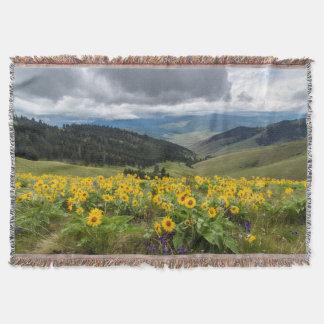 Wildflowers de la primavera en las colinas manta
