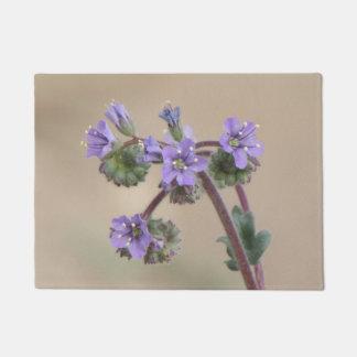 Wildflowers de la púrpura de Phacelia Felpudo
